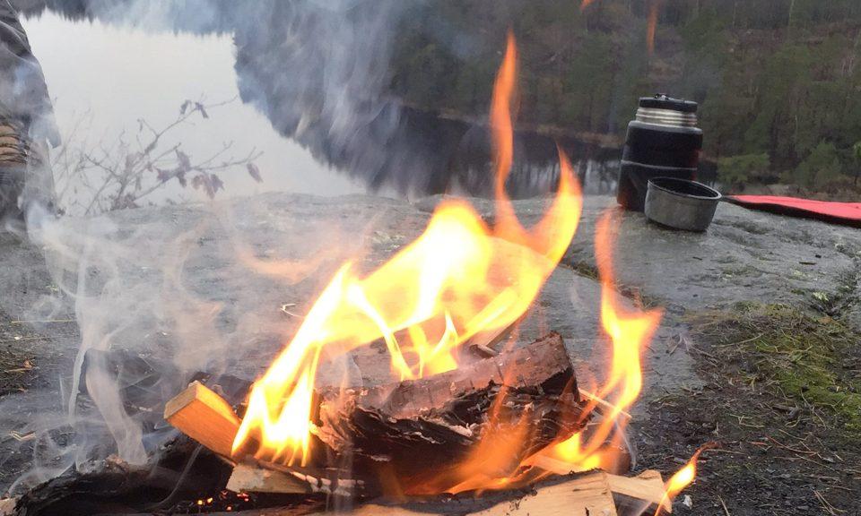 Närbild på eld, grillning utomhus.